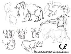 Rhino_Elephant_Monkey_and_Doggies