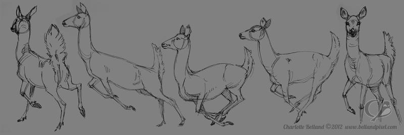 Akron Deer