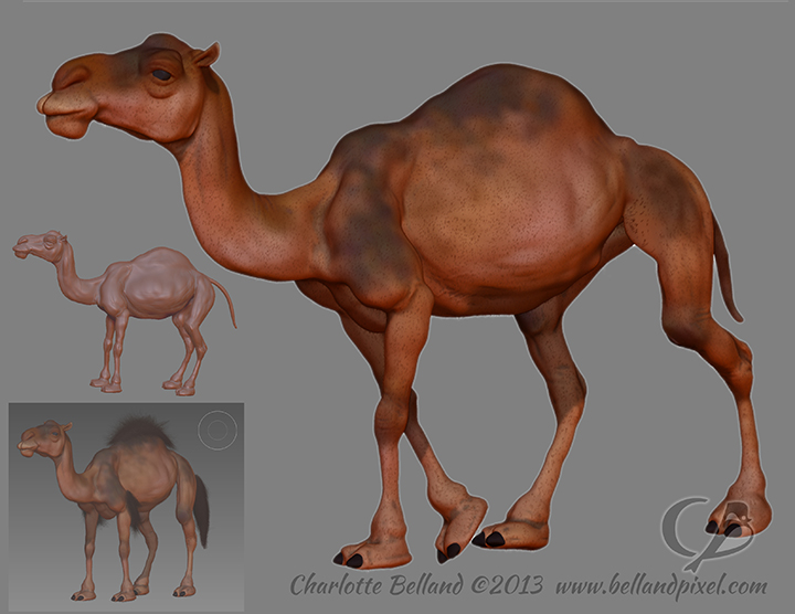 13_14_cbelland_ZBrush_camel