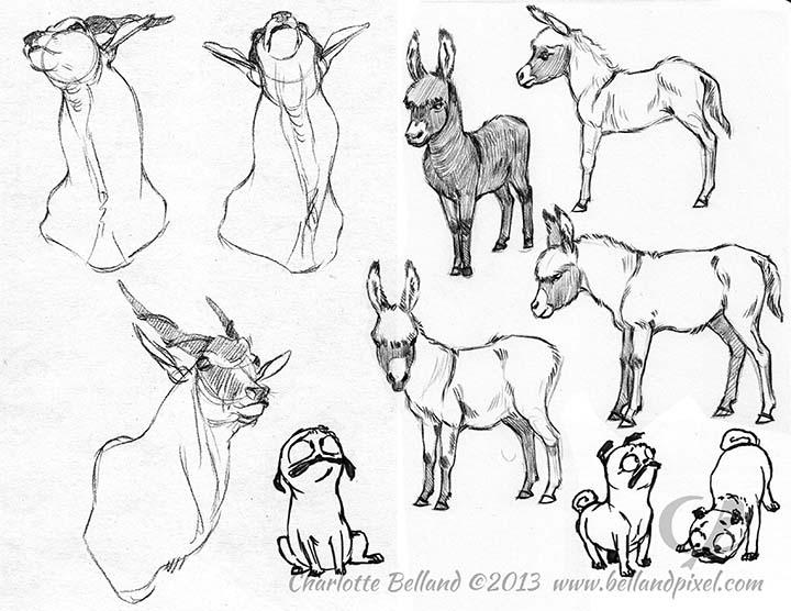 13_19_cbelland_Eland_Donkey_Pugs