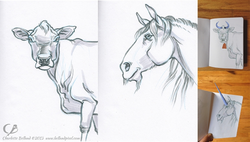 13_cbelland_sbp_AR_cow_unicorn