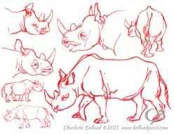 13_34_cbelland_CBus_Zoo_Rhinos