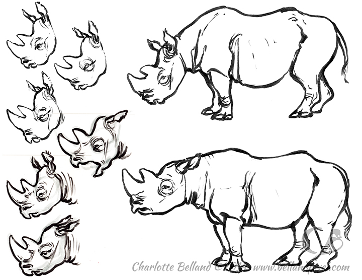14_24_cbelland_Black_Rhino