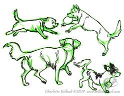 14_33_cbelland_Happy_Doggies_june