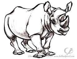14_38_cbelland_Bowling_for_Rhinos