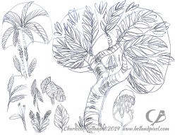 14_42_cbelland_Costa_Rica_Plants